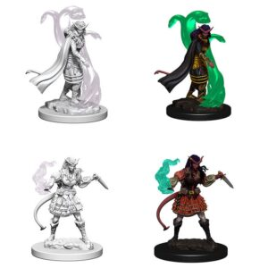 tiefling-female-sorcerer-dnd-minis